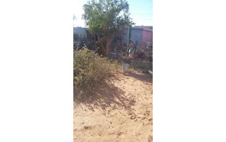 Foto de casa en venta en  , invasión el mirador, hermosillo, sonora, 2014926 No. 06