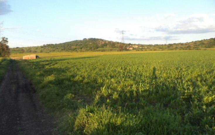 Foto de terreno habitacional en venta en, irapuato centro, irapuato, guanajuato, 1414745 no 04