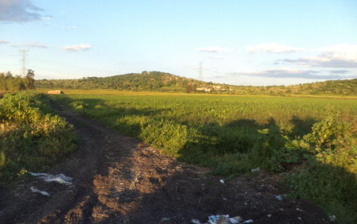 Foto de terreno habitacional en venta en, irapuato centro, irapuato, guanajuato, 1414745 no 07