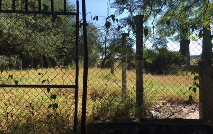 Foto de terreno habitacional en venta en  , irapuato, irapuato, guanajuato, 1871652 No. 04