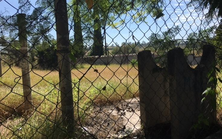 Foto de terreno habitacional en venta en  , irapuato, irapuato, guanajuato, 1871652 No. 08