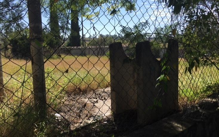 Foto de terreno habitacional en venta en  , irapuato, irapuato, guanajuato, 1871652 No. 09
