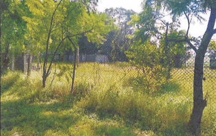 Foto de terreno habitacional en venta en  , irapuato, irapuato, guanajuato, 1871652 No. 12