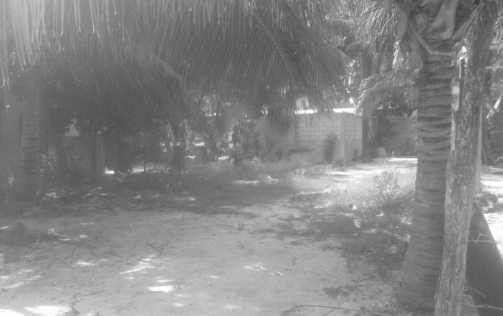 Foto de terreno habitacional en venta en  , isla aguada, carmen, campeche, 1374043 No. 01