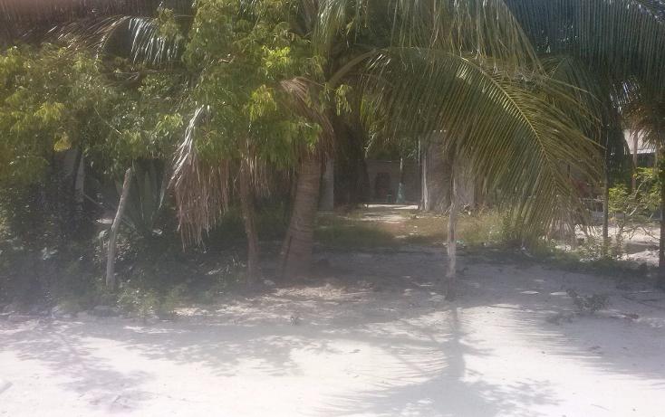 Foto de terreno habitacional en venta en  , isla aguada, carmen, campeche, 1374043 No. 03