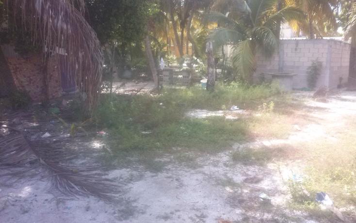 Foto de terreno habitacional en venta en  , isla aguada, carmen, campeche, 1374043 No. 04