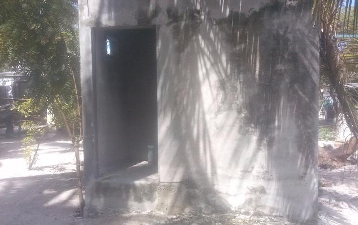 Foto de terreno habitacional en venta en  , isla aguada, carmen, campeche, 1374043 No. 05