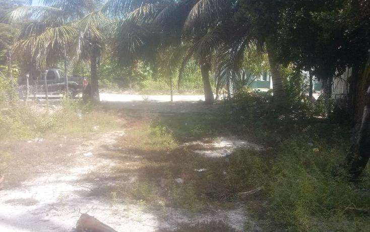 Foto de terreno habitacional en venta en  , isla aguada, carmen, campeche, 1374043 No. 06