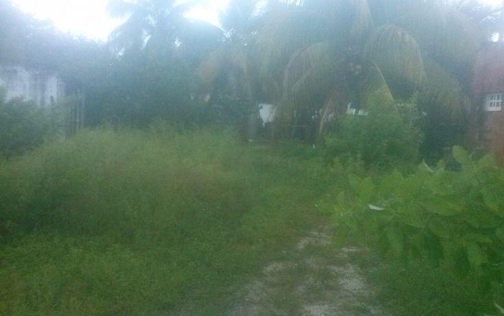Foto de terreno comercial en venta en, isla aguada, carmen, campeche, 1477781 no 02