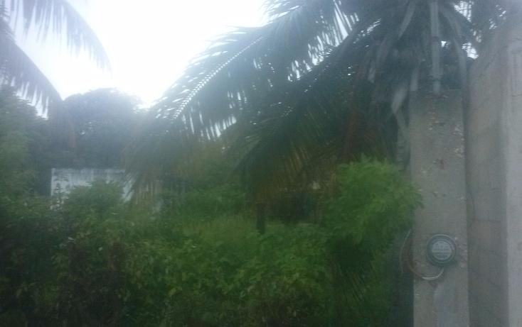 Foto de terreno comercial en venta en  , isla aguada, carmen, campeche, 1477781 No. 03