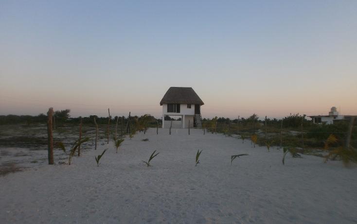 Foto de terreno habitacional en venta en  , isla aguada, carmen, campeche, 1526553 No. 10