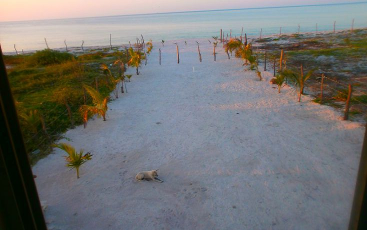 Foto de terreno habitacional en venta en, isla aguada, carmen, campeche, 1526553 no 11