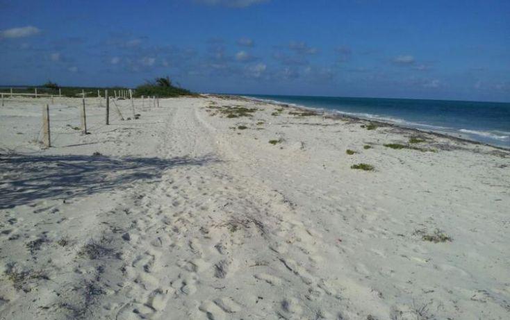 Foto de terreno comercial en venta en isla blanca 1, isla blanca, isla mujeres, quintana roo, 1988144 no 01