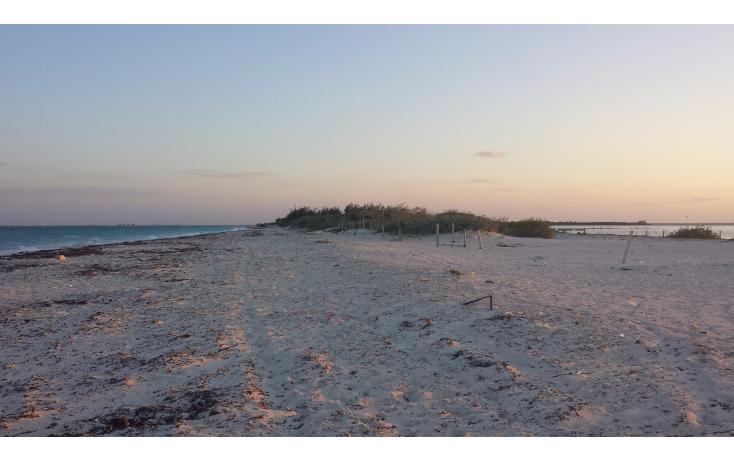Foto de terreno comercial en venta en  , isla blanca, isla mujeres, quintana roo, 1187959 No. 02