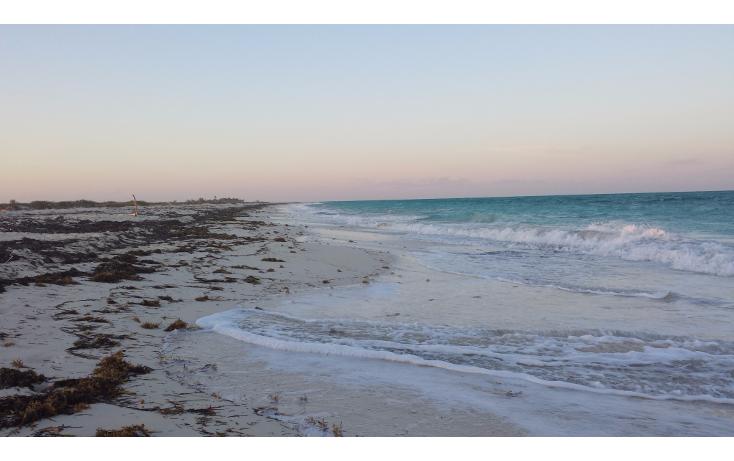 Foto de terreno comercial en venta en  , isla blanca, isla mujeres, quintana roo, 1187959 No. 03