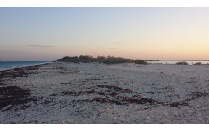 Foto de terreno comercial en venta en  , isla blanca, isla mujeres, quintana roo, 1187959 No. 04