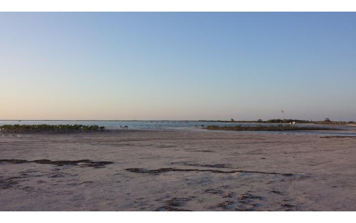 Foto de terreno comercial en venta en  , isla blanca, isla mujeres, quintana roo, 1187959 No. 06