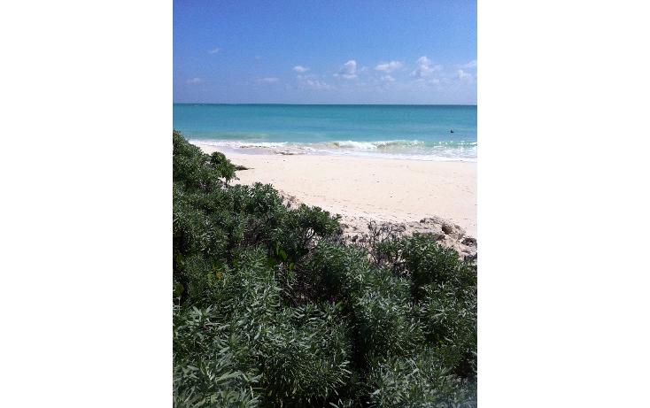 Foto de terreno habitacional en venta en  , isla blanca, isla mujeres, quintana roo, 1423395 No. 01