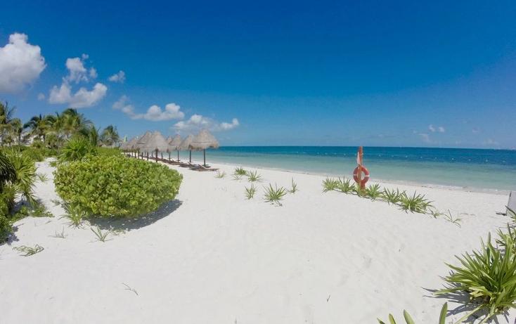 Foto de departamento en renta en  , isla blanca, isla mujeres, quintana roo, 1477693 No. 14