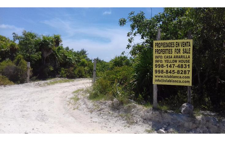 Foto de terreno habitacional en venta en  , isla blanca, isla mujeres, quintana roo, 1489317 No. 02