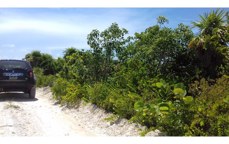 Foto de terreno habitacional en venta en  , isla blanca, isla mujeres, quintana roo, 1489317 No. 03