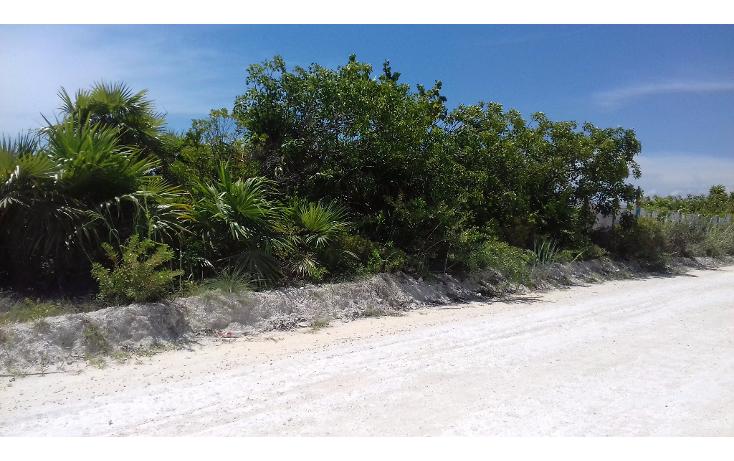 Foto de terreno habitacional en venta en  , isla blanca, isla mujeres, quintana roo, 1489317 No. 04
