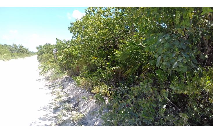 Foto de terreno habitacional en venta en  , isla blanca, isla mujeres, quintana roo, 1489317 No. 06