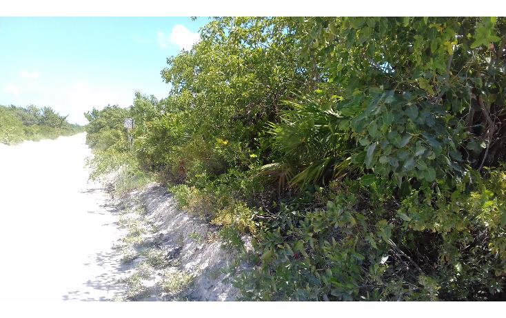 Foto de terreno habitacional en venta en  , isla blanca, isla mujeres, quintana roo, 1489317 No. 07