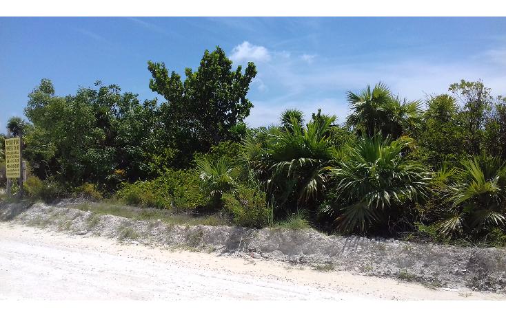 Foto de terreno habitacional en venta en  , isla blanca, isla mujeres, quintana roo, 1489317 No. 08
