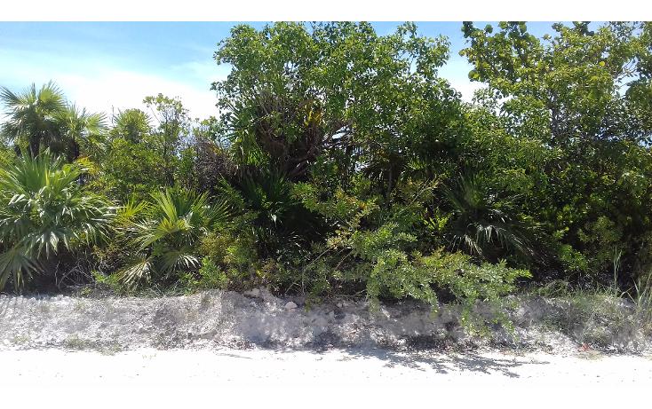 Foto de terreno habitacional en venta en  , isla blanca, isla mujeres, quintana roo, 1489317 No. 09