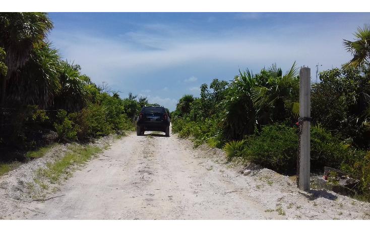 Foto de terreno habitacional en venta en  , isla blanca, isla mujeres, quintana roo, 1489317 No. 10
