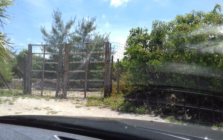 Foto de terreno habitacional en venta en  , isla blanca, isla mujeres, quintana roo, 1489317 No. 14