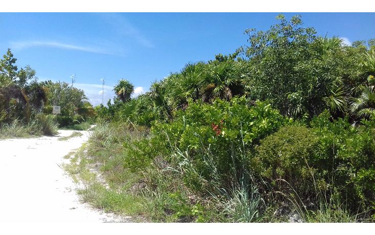 Foto de terreno habitacional en venta en  , isla blanca, isla mujeres, quintana roo, 1489317 No. 15
