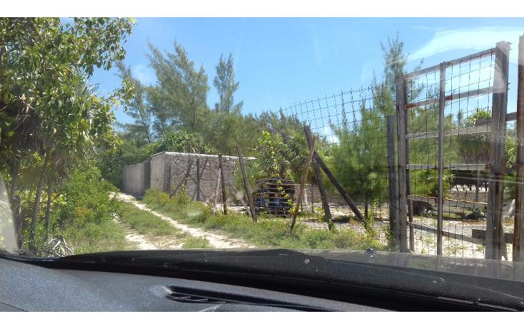 Foto de terreno habitacional en venta en  , isla blanca, isla mujeres, quintana roo, 1489317 No. 16