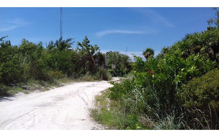 Foto de terreno habitacional en venta en  , isla blanca, isla mujeres, quintana roo, 1489317 No. 17