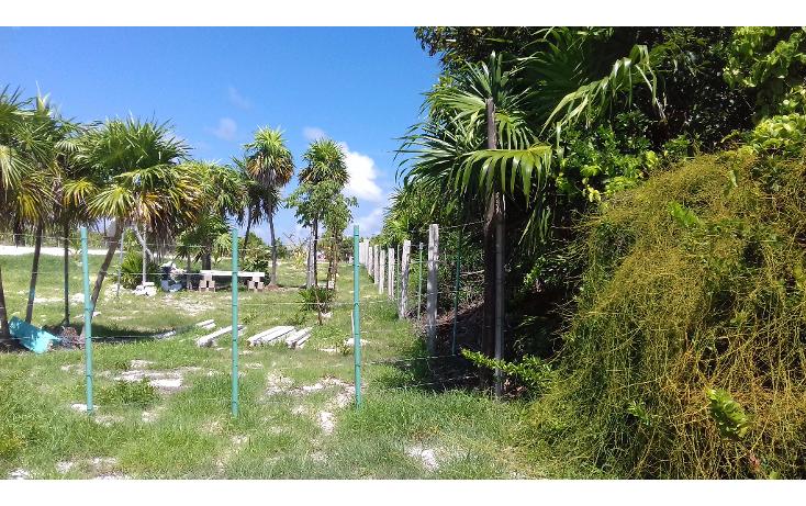 Foto de terreno habitacional en venta en  , isla blanca, isla mujeres, quintana roo, 1489317 No. 19