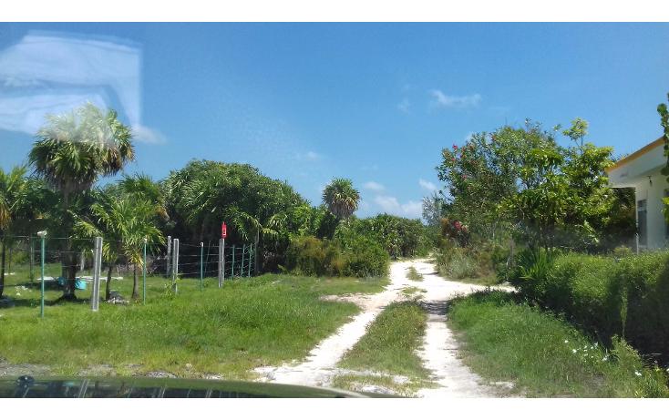 Foto de terreno habitacional en venta en  , isla blanca, isla mujeres, quintana roo, 1489317 No. 20