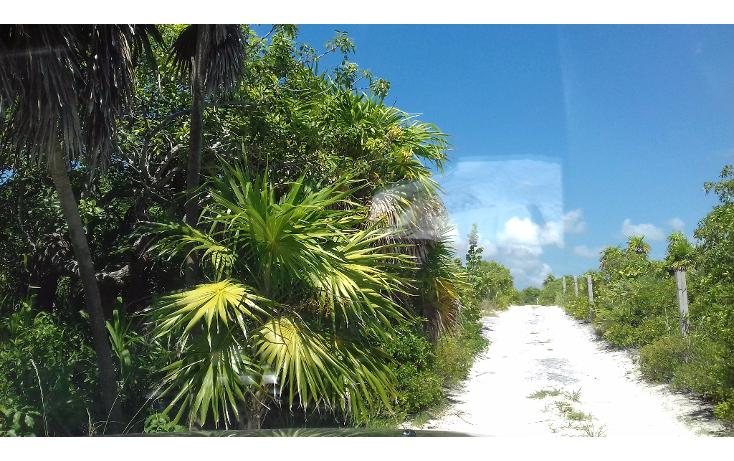 Foto de terreno habitacional en venta en  , isla blanca, isla mujeres, quintana roo, 1489317 No. 21