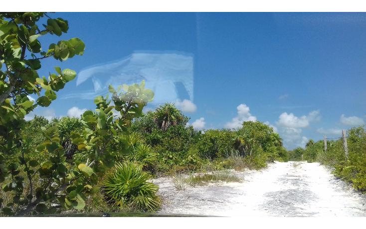 Foto de terreno habitacional en venta en  , isla blanca, isla mujeres, quintana roo, 1489317 No. 22
