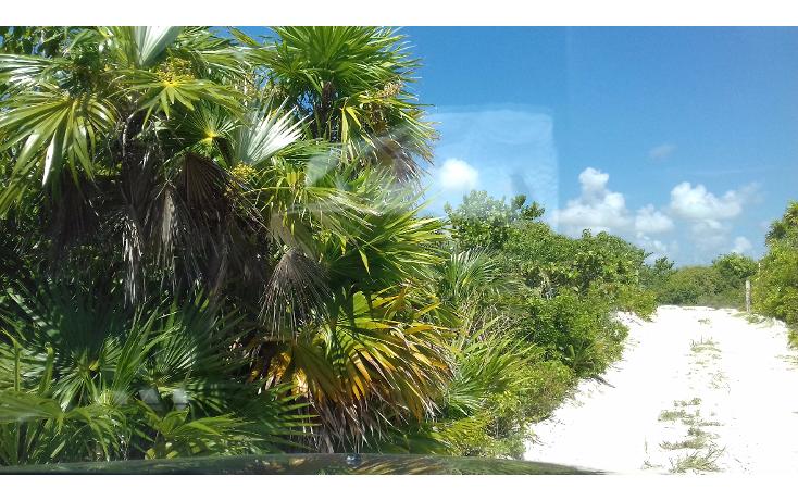 Foto de terreno habitacional en venta en  , isla blanca, isla mujeres, quintana roo, 1489317 No. 23