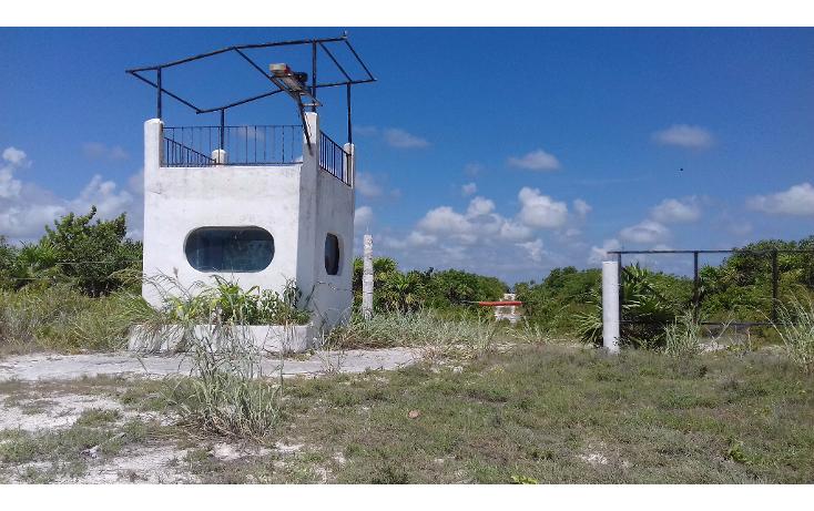 Foto de terreno habitacional en venta en  , isla blanca, isla mujeres, quintana roo, 1489317 No. 24