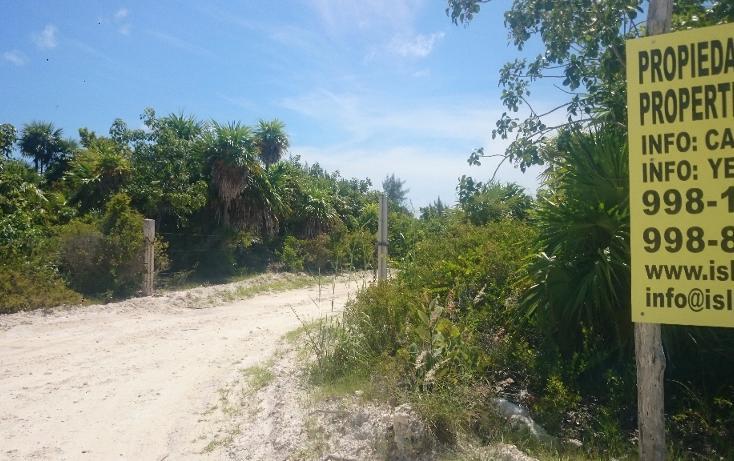 Foto de terreno habitacional en venta en  , isla blanca, isla mujeres, quintana roo, 1489317 No. 25
