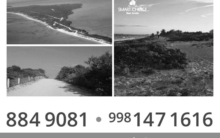 Foto de terreno comercial en venta en  , isla blanca, isla mujeres, quintana roo, 1612520 No. 03