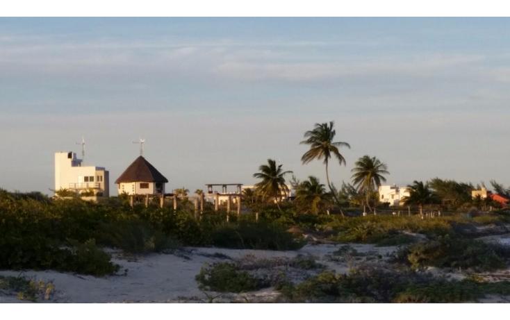 Foto de terreno comercial en venta en  , isla blanca, isla mujeres, quintana roo, 1612520 No. 05