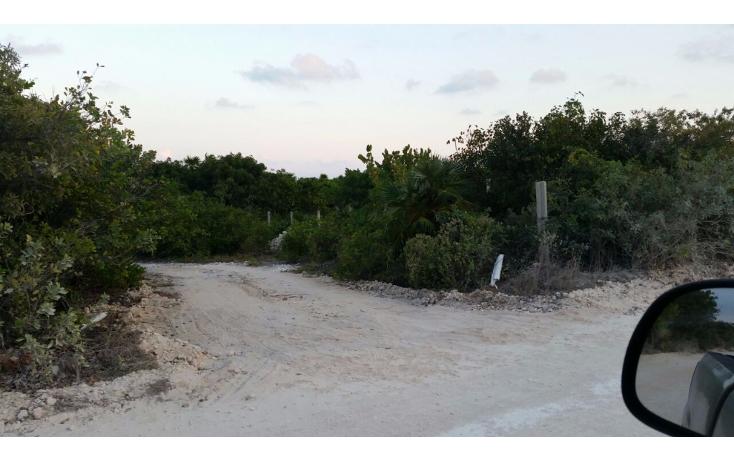 Foto de terreno comercial en venta en  , isla blanca, isla mujeres, quintana roo, 1612520 No. 09