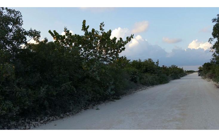 Foto de terreno comercial en venta en  , isla blanca, isla mujeres, quintana roo, 1612520 No. 10