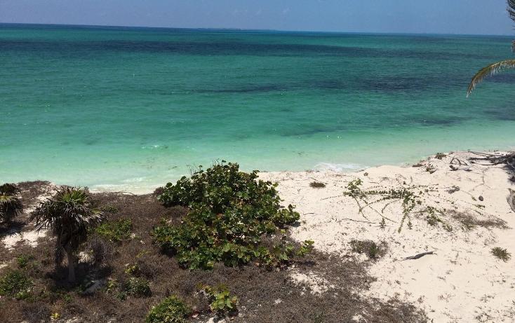 Foto de casa en venta en  , isla blanca, isla mujeres, quintana roo, 1630886 No. 20