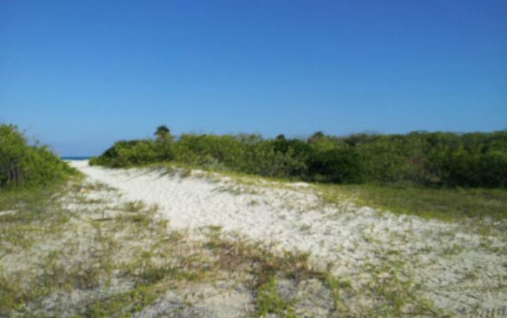 Foto de terreno habitacional en venta en  , isla blanca, isla mujeres, quintana roo, 1657258 No. 06