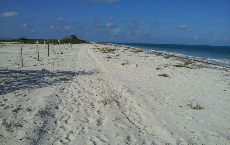 Foto de terreno habitacional en venta en  , isla blanca, isla mujeres, quintana roo, 1657258 No. 07
