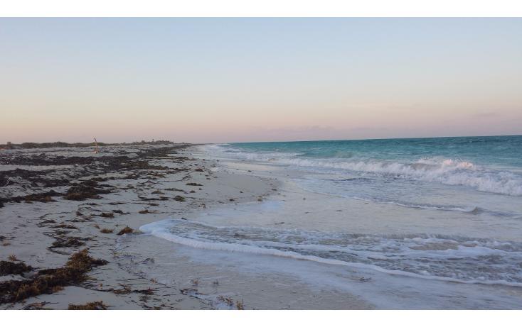 Foto de terreno comercial en venta en  , isla blanca, isla mujeres, quintana roo, 2623410 No. 03